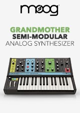 Moog Grandmother Synth Analogico Semi-Modulare